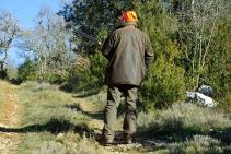 hunting-583086_960_720